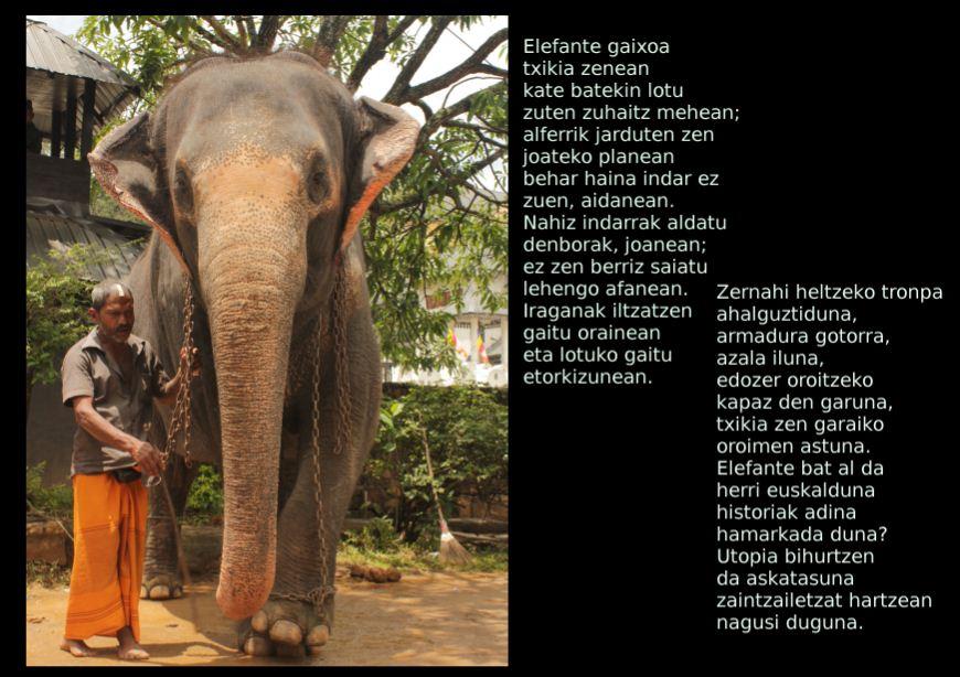Elefante bat al da herri euskalduna?