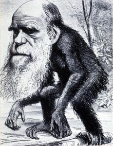 Darwin VS Txomin